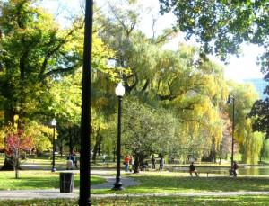 garden-park