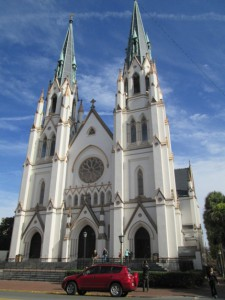 3d savannah  katedra