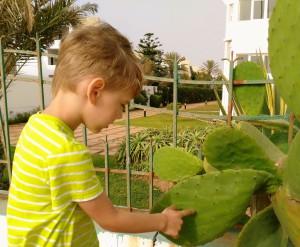 Na promenadzie nadmorskiej w Agadirze