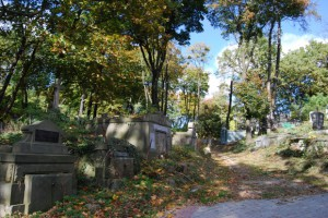 6. cmentarz lyczakowski 2